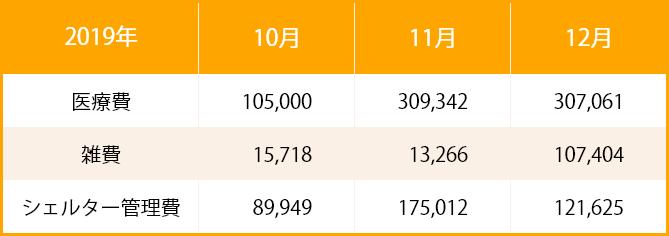 2019年_支出票